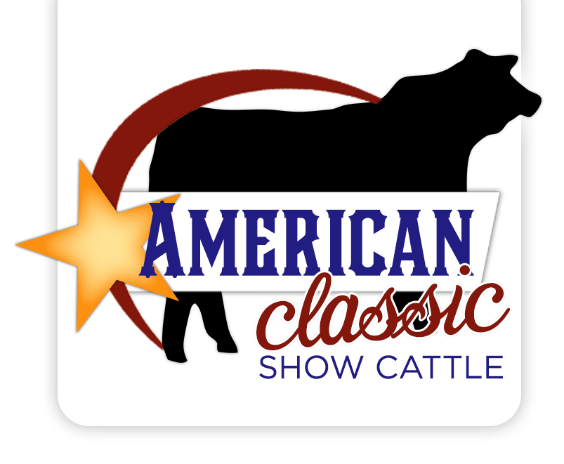 americanclassic logo webonly2 american classic show cattle